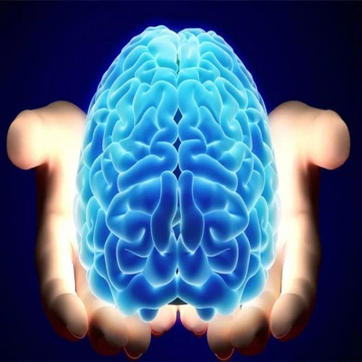 生酮饮食抗癫痫机制:大脑是如何利用酮体作为能量来源的?
