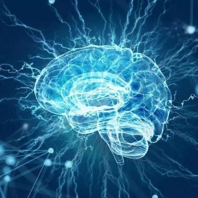 健酮丨研究生酮饮食治疗小儿癫痫的神经保护作用
